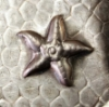 Picture of Impression Die Large Starfish