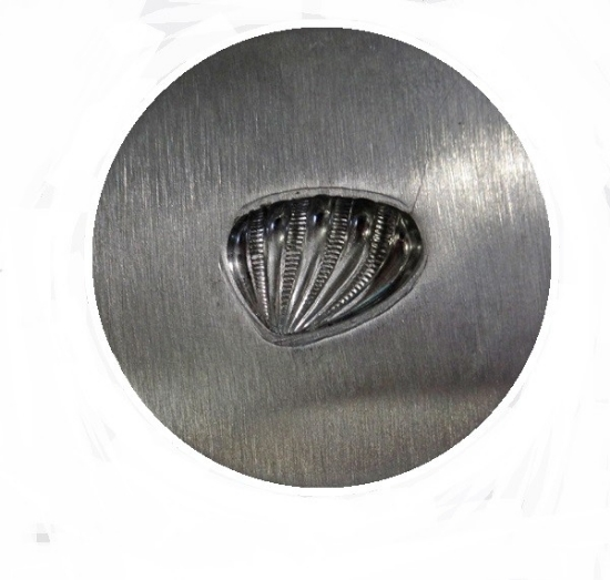 Picture of Impression Die Fluted Shell