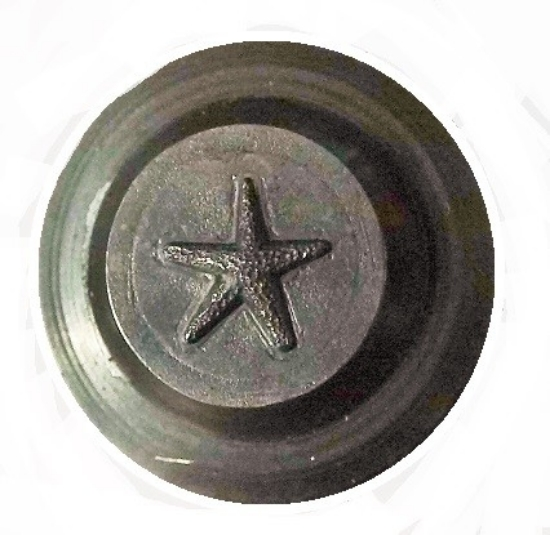 Picture of Shot Plate Tiny Starfish