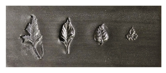 Picture of *Master Broken* Impression Plate: Leaves