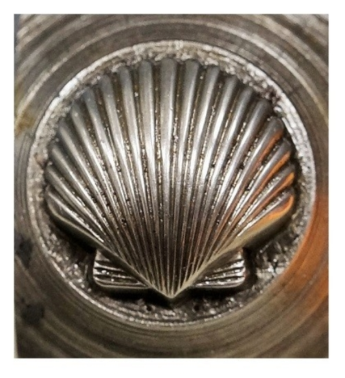 Picture of Impression Die Domed Shell
