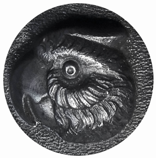 Picture of Impression Die Curious Parrot's Stare