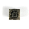 Picture of Impression Die Shot Plate 162 Floral Triad Set